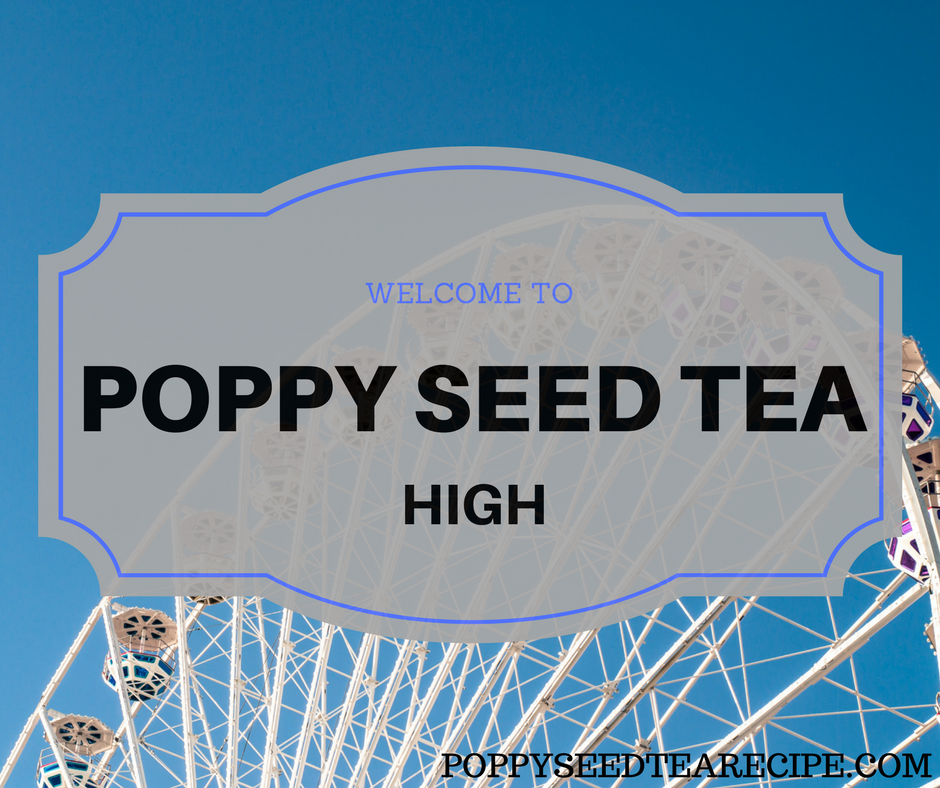 Poppy Seed Tea High