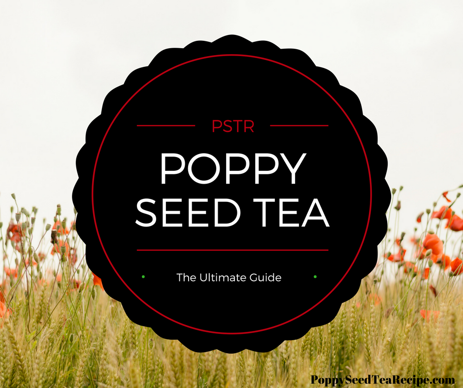 Poppy Seed Tea: Discover the Secrets of this Homemade High