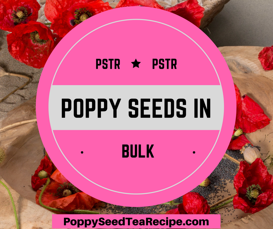Poppy seeds in bulk discover where to buy the best unwashed seeds poppy seeds in bulk mightylinksfo