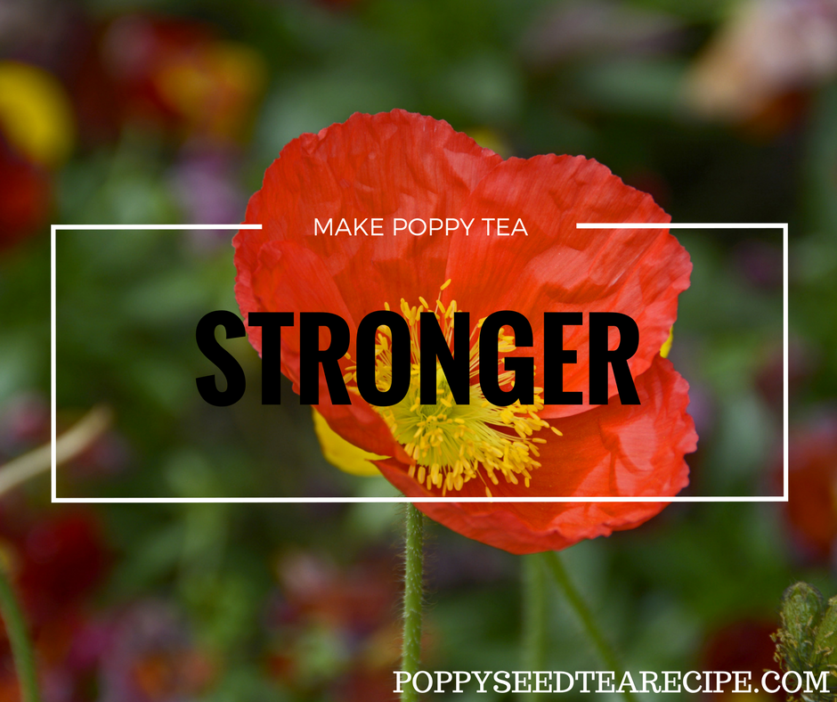 make poppy tea stronger