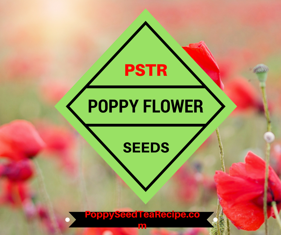 poppy flower seeds
